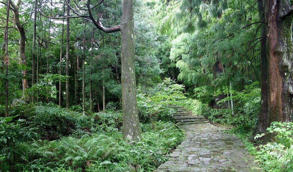 【妊活神社】和歌山県の妊活神社・子宝神社】を大公開