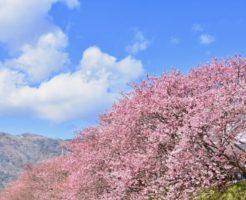 【妊活神社】静岡県の妊活神社・子宝神社を大公開