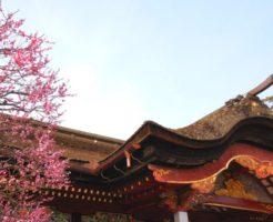 【妊活神社】福岡県の妊活神社・子宝神社を大公開