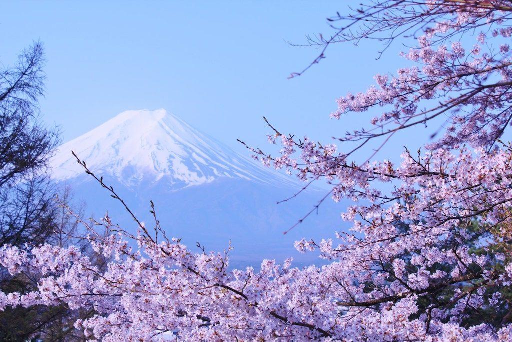【妊活ジンクス】妊婦さんが陣痛中に描いた「富士山の絵」
